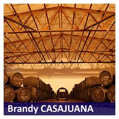 Brandy Casajuana